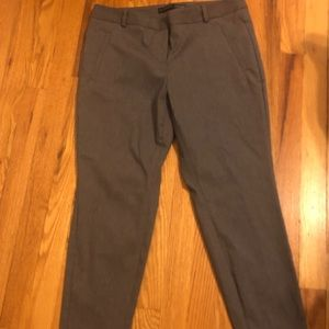 The limited dress pants size 8 short